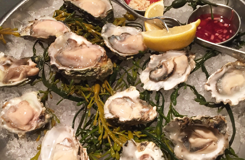 oyster_slider-1